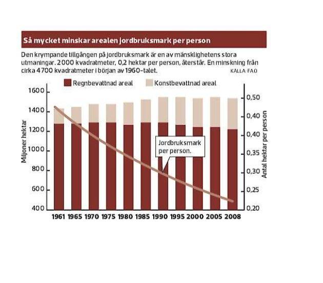 Den krympande tillgången på jordbruksmark är en av mänsklighetens stora utmaningar. 2 000 kvadratmeter, 0,2 hektar per person, återstår. Det är en minskning från cirka 4 700 kvadratmeter per person i början av 1960-talet. Källa FAO