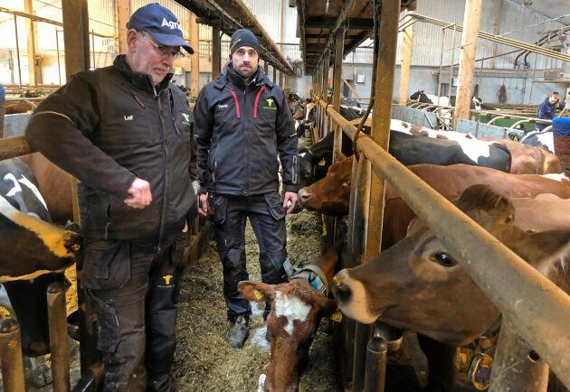 Leif och David Pettersson bestämde sig tidigt tillsammans med övriga på Kolstorps gård för att de ville hjälpa till efter den omfattande branden på Vreta där 134 djur dog.