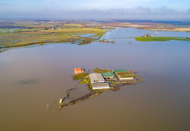 """""""Sjöutsikt i all ära, men helst inte över vetefälten"""", skriver Tord Karlsson. På bilden en bondgård i engelska Lincolnshire efter att en närliggande flod svämmat över och dränkt över 400 hektar jordbruksmark med vatten i mitten på november i år."""