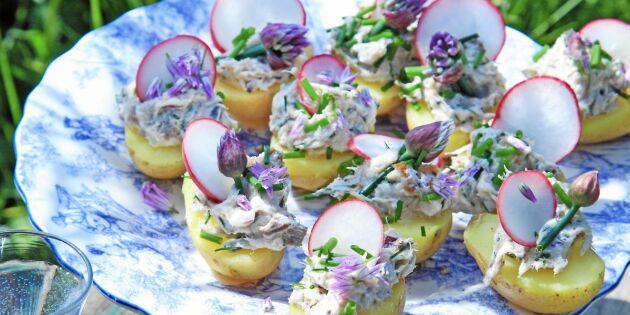 Potatiscanapéer med makrillskagen