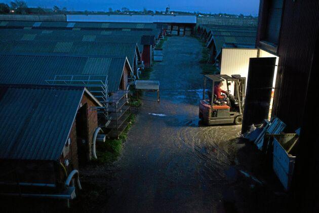 Minkgården vid Hallandskusten har funnits sedan slutet av 1950-talet. Den är numera den enda i länet vilken kan vara en av förklaringarna till att aktivisterna har utsett den till måltavla.
