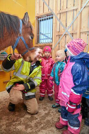 Hästen Savoj är barnens favorit. Nu ska han få nya vinterskor och det är spännande.