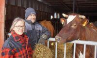 31 mjölkbönder får guldmedalj