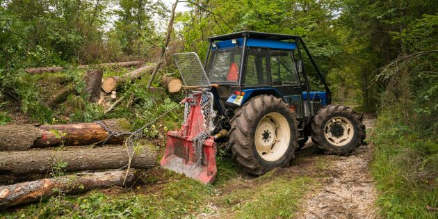 Barkborren gav fördubblade anmälningar om avverkning