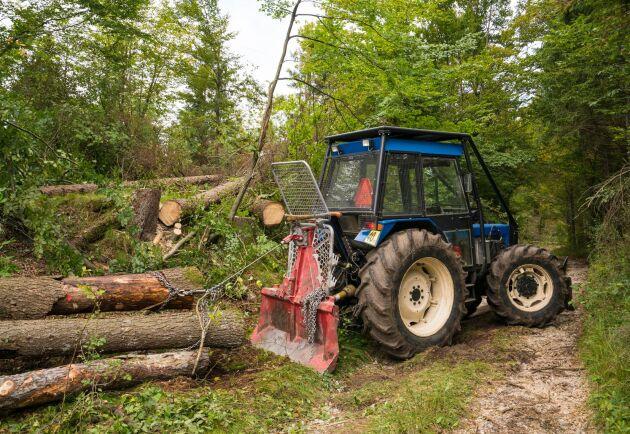 De stora bestånden av barkborreangripna granar innebär en fördubbling av avverkningsanmälningarna i Blekinge län.