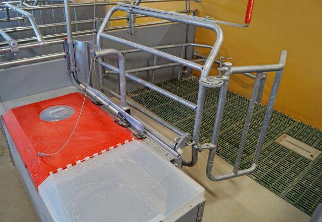 Grisningsboxen Befree ger säker och rationell arbetsmiljö.