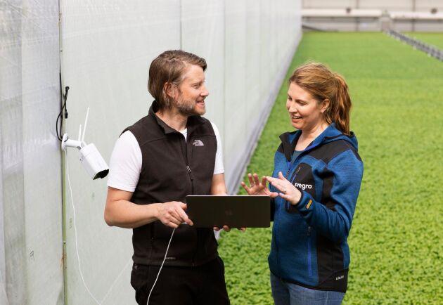 Svegro samlade redan på en mängd data, men tog hjälp av Erik Fredlund som jobbar på IT-företaget Codon. Tillsammans byggde de ett program anpassat för Svergros odlingar.