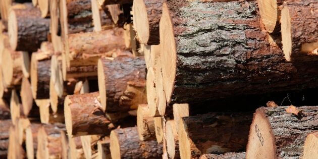AB Karl Hedin blir partnerföretag i Skogforsk