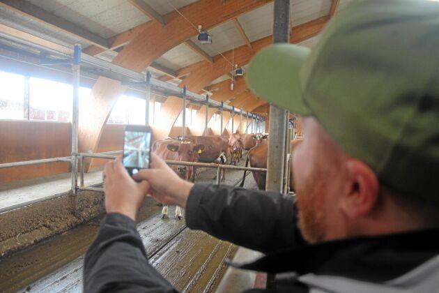 Folsbergas anläggning med mjölkroboten invigdes 2009 och kostade 10 miljoner kronor.