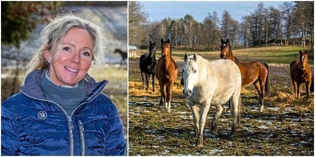 """Hon tror på lösdrift: """"Hästarna mår bra av det"""""""