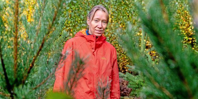 Hennes studier går på tvärs mot synen på markberedning