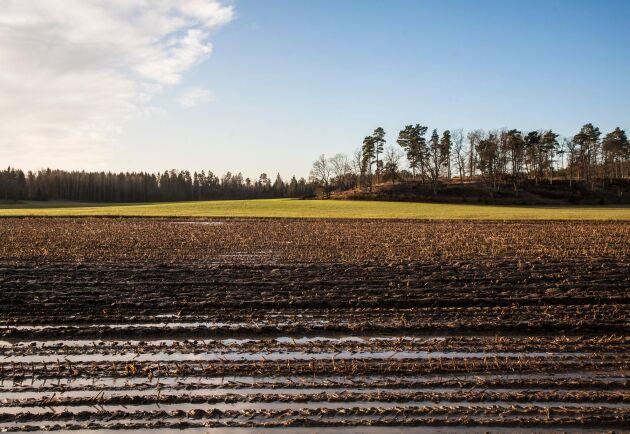 Det stämmer att en ökad tillförsel av organiskt material ökar kolinlagringen, men det är konstigt att SLU-forskarna fokuserar så mycket på tekniken och så lite på systemfrågor, skriver Gunnar Rundgren.