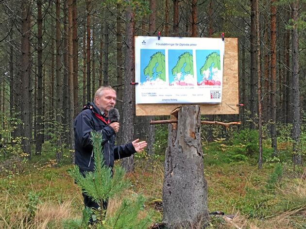 Jan Stenlid, professor vid institutionen för mykologi och växtpatologi vid SLU, ska leda skogsskadecentret.