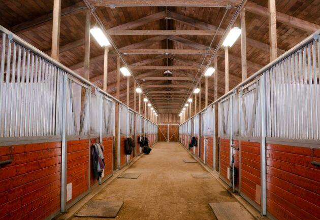 – Hästarna kommer att hanteras lite mer som lantbrukets djur, skillnaden är bara att hästar förflyttas mycket mer, säger David Slottner på Jordbruksverket.