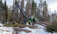 Skogsstyrelsen får bakläxa om avverkning
