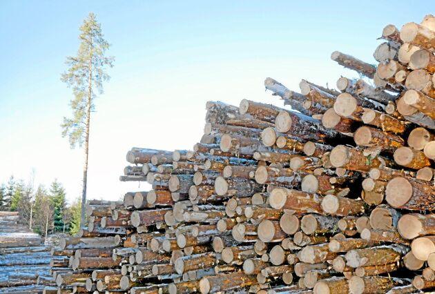 Flera punkter i den sakpolitiska färdplanen underlättar skogsbruk.
