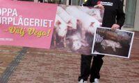 """""""Alla partier måste markera mot djurrättsaktivism"""""""