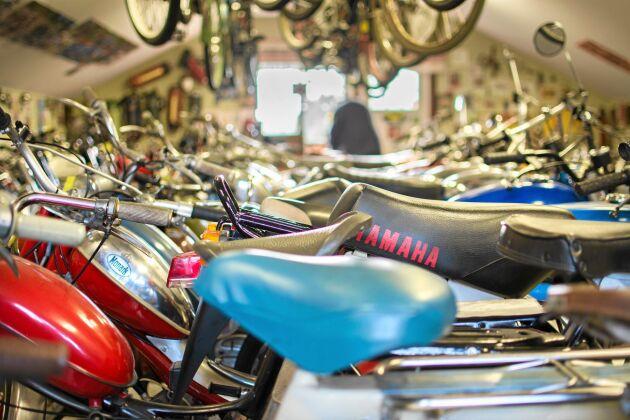 Vackert lackerade mopeder från 1950- och 1960-talen står på rad i muséet.