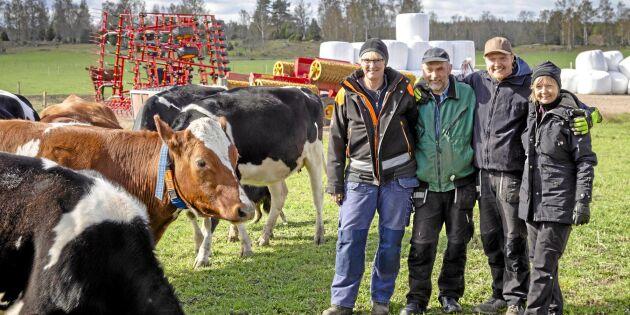 Köpte begagnad mjölkrobot – sedan var problemet löst