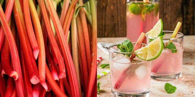 Rårörd rabarbersaft: Så gör du härligaste sommardrycken