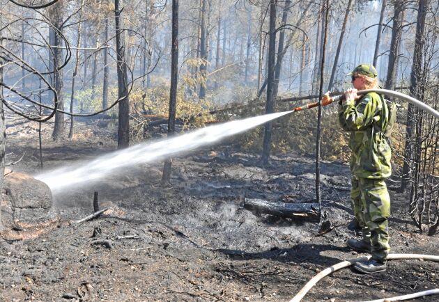 När branden rasade i somras deltog, förutom räddningstjänstens personal, både hemvärnet och lantbrukare i släckningsarbetet.