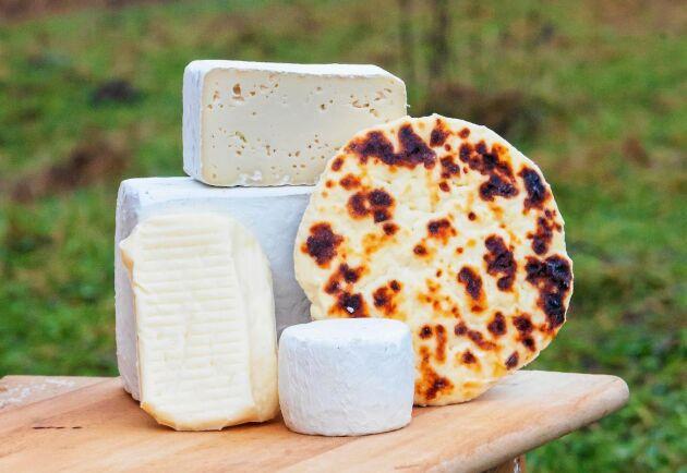 Ostar som tillverkas hos Kalix ost.