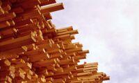Hyreshus med trästomme byggs i Uppland