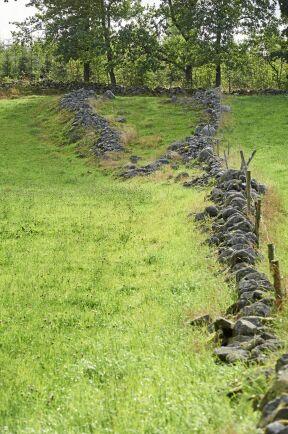 Resten av en fägata som fortsätter in i skogen i form av två stensträngar, nedsjunkna i marken, som ofta spår från järnåldern.