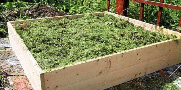 Sluta gräv i grönsakslandet – så lasagneodlar du steg för steg