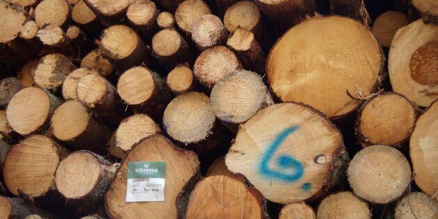 Underbetalt virke utarmar skogsmaskinsägare