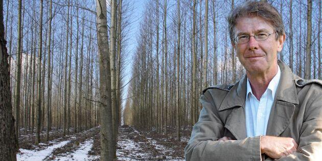 """""""Det finns andra trädslag än gran"""""""