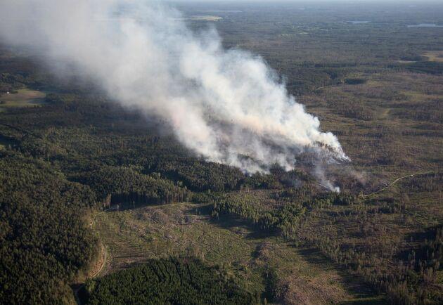 Brandområdet är 1,5 kvadratkilometer stort.