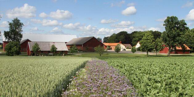 Arla och Naturkompaniet sponsrar odlare