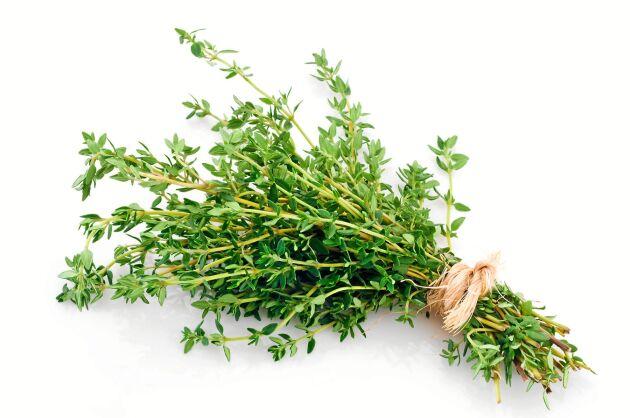 Mejram och timjan är motverkar enligt folkmedicinen väderspänning och dålig matsmältning.
