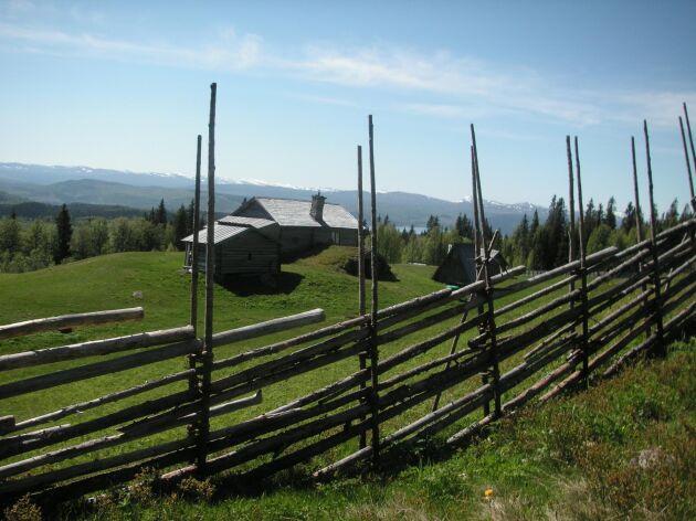 Natursköna Myhrbodarna i Jämtland har tvingats stänga ner på grund av att den inte registrerats för livsmedelskontroll.