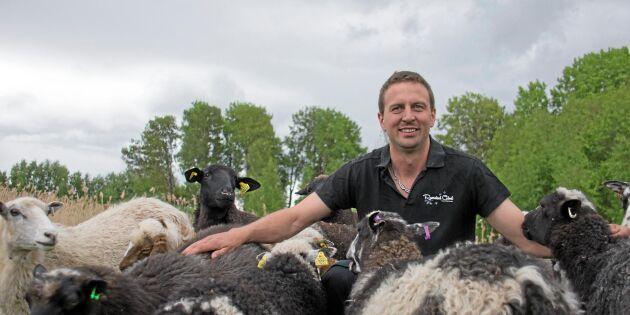 Bonde som fann fru satsar på fler får