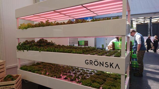 Bolaget Grönska odlar kryddväxter och säljer även odlingssystem för butiker.