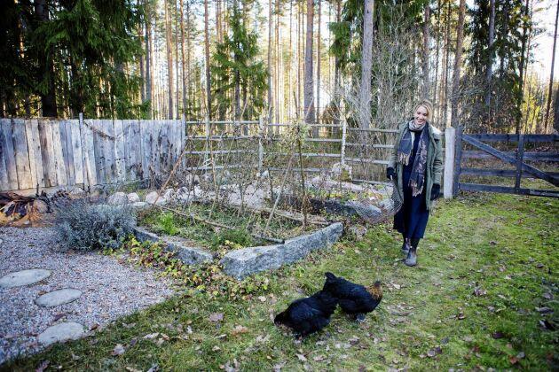 De svarta hönsen följer kacklande Erika i hälarna. Odlingsbäddarna omgärdade av sten, från gamla grindstolpar, vilar för vintern.