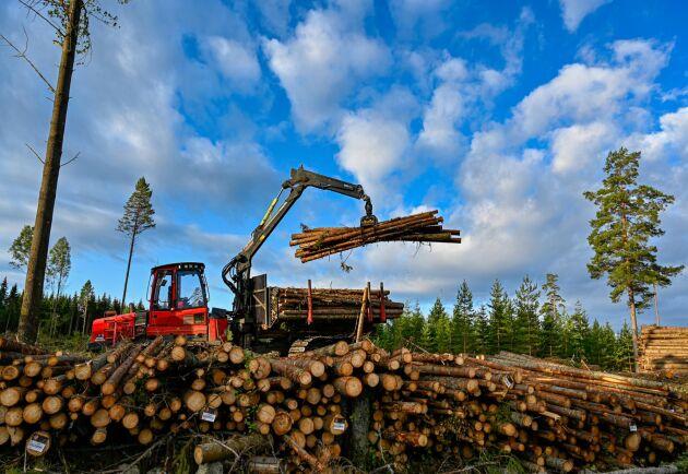 MKP-Dunbergs VD Mattias Ringström tror på fler strukturaffärer i skogsentreprenörsbranschen.