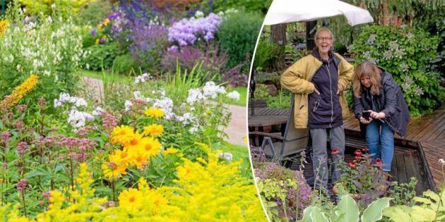 Öppen Trädgård med Land – anmäl dig i dag