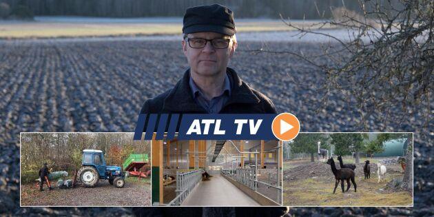 ATL TV: Här är Vretas nya ladugård