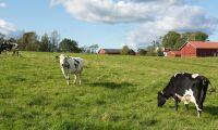 Gott om alternativa fakta om jordbruk