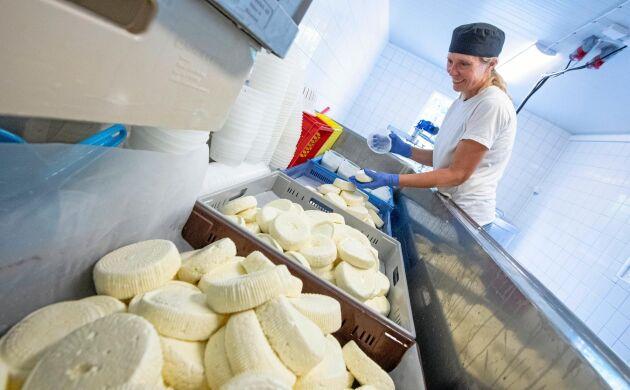 Maria Tuvesson Lindgren på Soldattorpets mejeri i Hyby tillverkar svensk grillost under namnet eldost. All ost är tingad innan den ens är tillverkad.