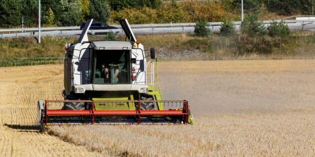 Inga långsiktiga satsningar på lantbruket