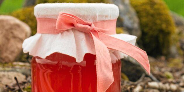 Kryddig rabarberdricka i saftmaja – recept från Sara Bäckmos nya bok!