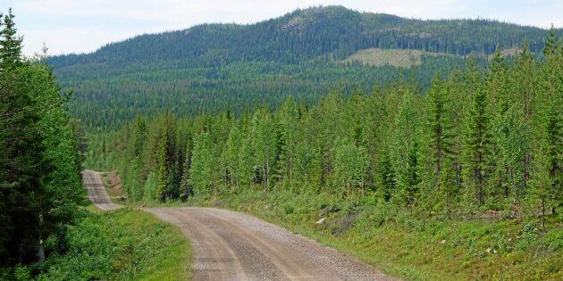 Rekordmånga vill avverka fjällnära skog