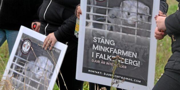 """""""Djurrättsaktivister missbrukar yttrandefriheten"""""""