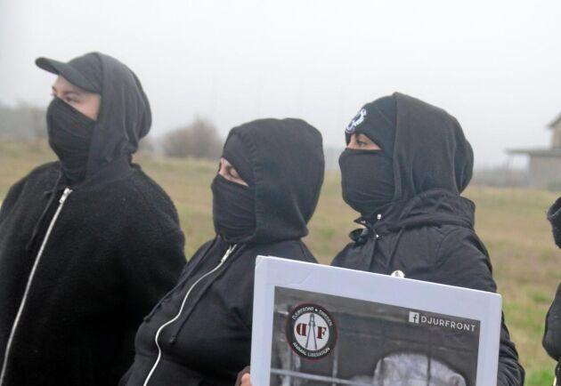 Djurrättsaktivister demonstrerar utanför en mingård i Falkenberg.