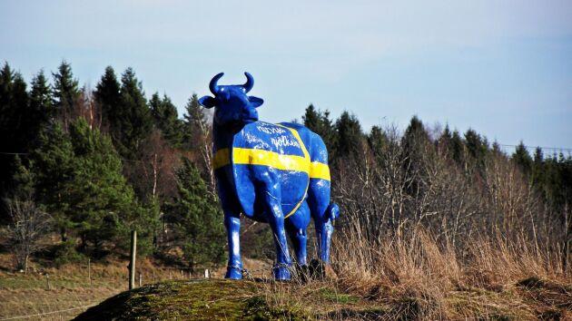 Hjälp Marie Åsåker att hitta sin staty!