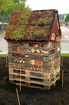 Mitt i Borgmästarrondellen i centrala Kungsbacka står detta insektshotell – med balkong och allt!
